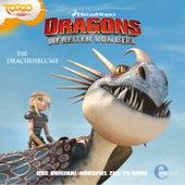Folge 6: Die Drachenblume (Das Original-Hörspiel zur TV-Serie) von Dragons - Die Reiter von Berk