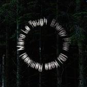 Energy Flow (DJ Koze Remixes) de Mano Le Tough