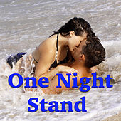 One Night Stand by Various Artists