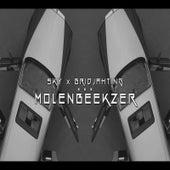 Molenbeekzer by Sky
