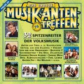 Das große Musikantentreffen - Folge 20 de Various Artists