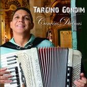 Canções Divinas by Targino Gondim