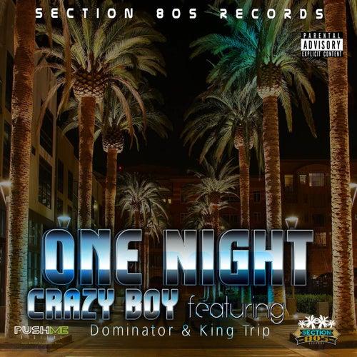 One Night by Crazy Boy