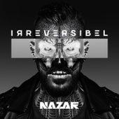Irreversibel von Nazar