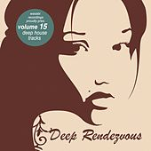 Deep Rendevouz, Vol. 15 by Various Artists