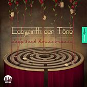 Labyrinth der Töne, Vol. 15 - Deep & Tech-House Music de Various Artists