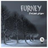 Frozen Hours - Single de Furney
