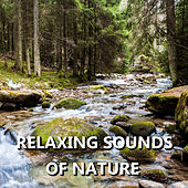 Relaxing Sounds of Nature de Sounds Of Nature