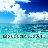 Exotic Ocean Sounds by Ocean Sounds Collection (1)