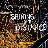 Shining in the Distance by Stray Birds