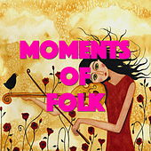 Moments Of Folk de Various Artists