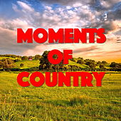 Moments Of Country de Various Artists