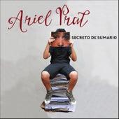 Secreto de Sumario - Single de Ariel Prat