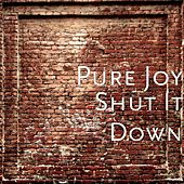 Shut It Down by Pure Joy