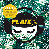 Flaix FM Summer 2016 de Various Artists