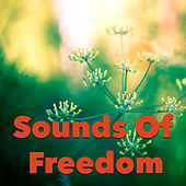 Sounds Of Freedom by Various Artists