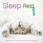 Sleep, Rest, Relax de Various Artists