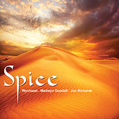 Spice by Various Artists