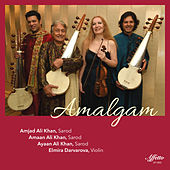 Amalgam by Various Artists