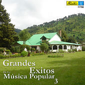 Grandes Éxitos de la Música Popular, Vol. 3 by Various Artists