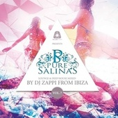 Pure Salinas, Vol. 7 (Compiled by DJ Zappi) de Various Artists