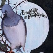 Bluebird by Brian Wright