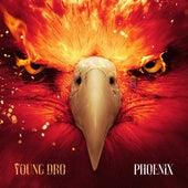 Phoenix de Young Dro