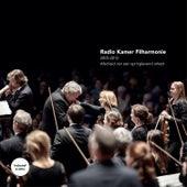 Afscheid Van Een Springlevend Orkest de Various Artists