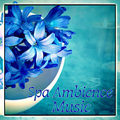 Spa Ambience Music – New Age Music for Feel Calmness, Peaceful while Spa Treatments, Soothing Sounds for Wellness, Bliss Spa by S.P.A