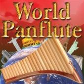 World Panflute de Ecosound