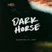 Dark Horse de Sleeping At Last