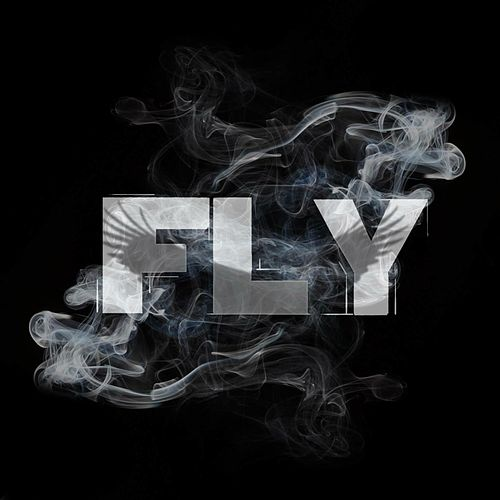 Fly by These Days