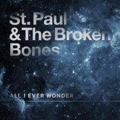 All I Ever Wonder by St. Paul & The Broken Bones