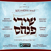 The Songs of Reb Pinchas Wolf de Various Artists