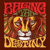 Destiny by Raging Fyah