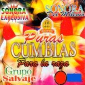 Pura Cumbias Para La Raza by Various Artists