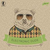 Electronic Dude, Vol. 6 by Various Artists