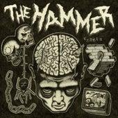 Vermin von Hammer