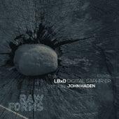 Digital Saphir - Single by LBxD