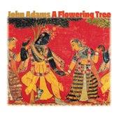 A Flowering Tree by John Adams
