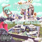 Never $ober Paradise by Bizzy
