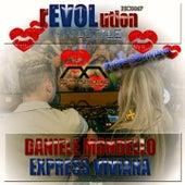 Revolution by Daniele Mondello