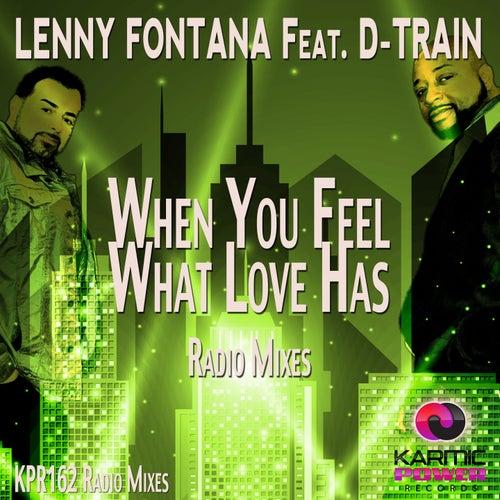 When You Feel What Love Has (Radio Mixes) von Lenny Fontana