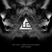 Hey Lion (Tom & Collins Remix) by Sofi Tukker