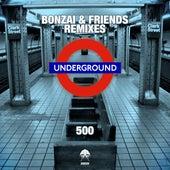 Bonzai & Friends 500 - Remixes de Various Artists