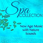Spa Collection - New Age Music with Nature Sounds & Wonderful Chill Out Songs for Massage, Well-Being, Relaxation & Vital Energy, Meditation Spa Music Playlist by S.P.A