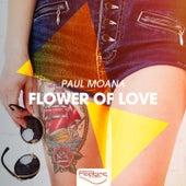 Flower of Love by Paul Moana