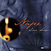 Love Songs fra Najee