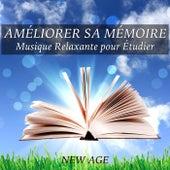 Améliorer sa Mémoire - Musique Relaxante pour Étudier concentration mentale de Various Artists