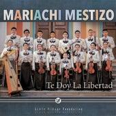 Te Doy la Libertad de Mariachi Mestizo